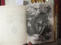 10 Les fleurs du mal 1899