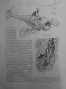 L' illustration 19 mai 1900 contes 10002 nuits